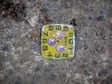 P3271832a-Watch-face.jpg