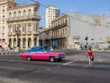 P3250431-crossing-the-road.jpg