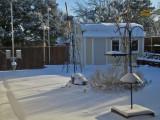 snow on my birthday2078-1024.jpg
