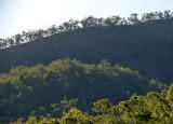 Silver Valley landscape
