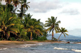 every tropical coast ...