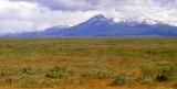 Chile Patagonia shrub steppe