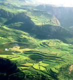 Peru Vallee del Colca