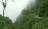 Bolivia road into the upper Amazon basin
