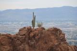 Phoenix Mountains, AZ