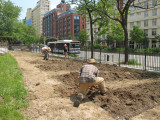 New York University Urban Farm Project