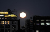 October 18, 2013 Photo Shoot - Full Moon, Fort Tryon Park, Columbia University Earth Science Labs & Cloisters