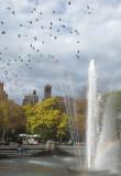 November 11-12, 2013 Photo Shoot - Washington Square Area