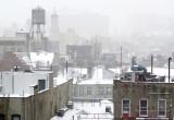 January 21, 2014 Photo Shoot - LaGuardia Place Snow Day