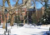 January 22, 2014 Photo Shoot - Mostly Snow Scenes Washington Square Park
