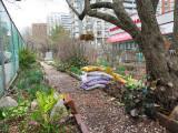 April 8, 2014 Photo Shoot - Mostly LaGuardia Corner Gardens, Greenwich Village NYC