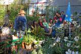 Herb, Nutrition & Fall Harvest Festival - LaGuardia Corner Garden