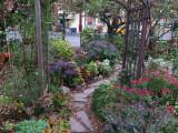 Fall 2014 - LaGuardia Corner Garden