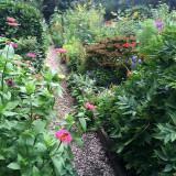 July 15, 2015 LaGuardia Corner Community Garden