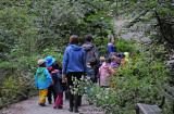 Exploring Nature - Plants & Animals