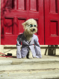 Waiting at the Church Door