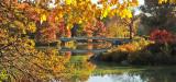 Bow Bridge in the Fall Season