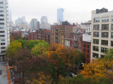 Park Strip & Trees to be Destroyed by NYU Expansion Plan