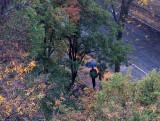 Morning Fall Rain on LaGuardia Place Garden Park