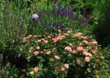 May 27-28, 2016 Photo Shoot - Canon G16 Washington Square Area Gardens