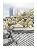 Western Monastery, Tsuen Wan