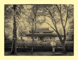 阿育王寺,寧波