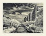 解放橋上看東河