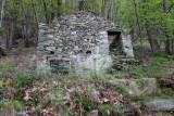 039 Ruins in Chestnut Forrest TdG 13.jpg