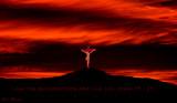 australian_churches