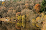 D4S_6882 landschap.jpg