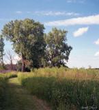 Entrance to Cherokee Marsh - Madison Wisconsin