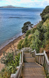 Kennedy Park is on a high cliff top. You can follow the wooden staircase all the way down the cliff-face to a little beach.  That is Rangototo Island in the distance