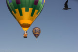 Lake Havasu City Balloon Fest 2014