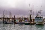 Charleston Docks, Oregon in the fog