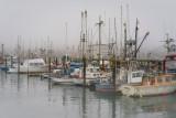 Charleston Docks in the fog, Coos Bay, OR