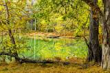 Radnor Lake Autumn
