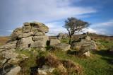 Holwell Tor on Dartmoor