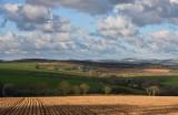 Last light in a rural scene in Mid Cornwall