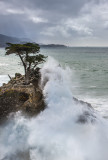Big Sur 2014