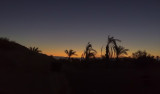 End-of-Night - Dawn-on-the-Desert