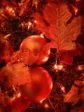 26 december IMG_4052.JPG
