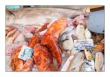 Marché aux poissons - Ile Rousse - Corse - 3526