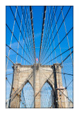 Under the cables of Brooklyn Bridge - New York - 8612