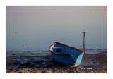 Barque en Camargue - 9818
