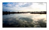 Marais de Pont de Gau - 0052