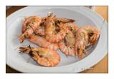 Crevettes grillées - 7346