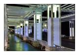 Stage IPS-Arta - Pergola à Nice - 5454