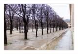 Paris - Palais Royal - Février 2016 - 9326