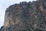 Pinara December 2013 4520.jpg