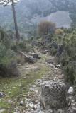 Pinara December 2013 4536.jpg